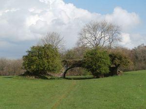 Lonely canal bridge