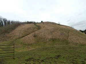 Barwick Motte and Bailey Castle